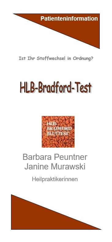 Abb. HLB-Flyer
