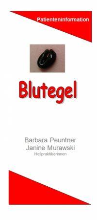 Abb. Blutegel-Flyer